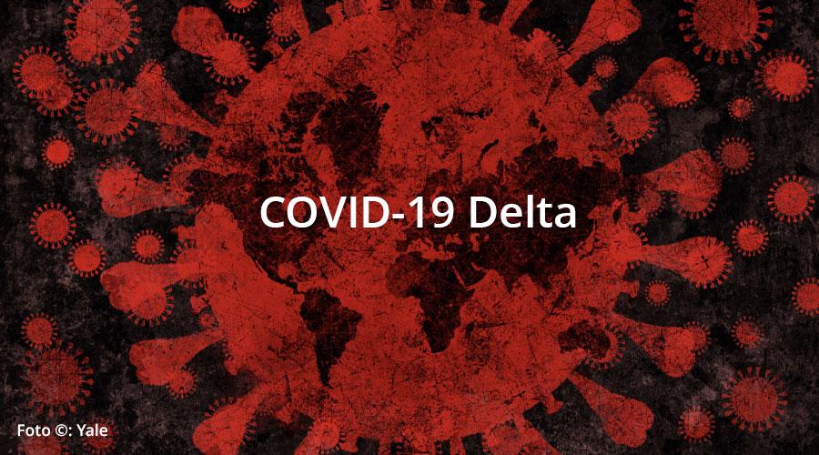 COVID-19 Variante Delta: 5 cosas que debes saber para cuidar tu salud